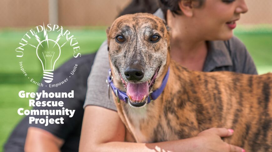 United Sparkies Greyhound Rescue Project